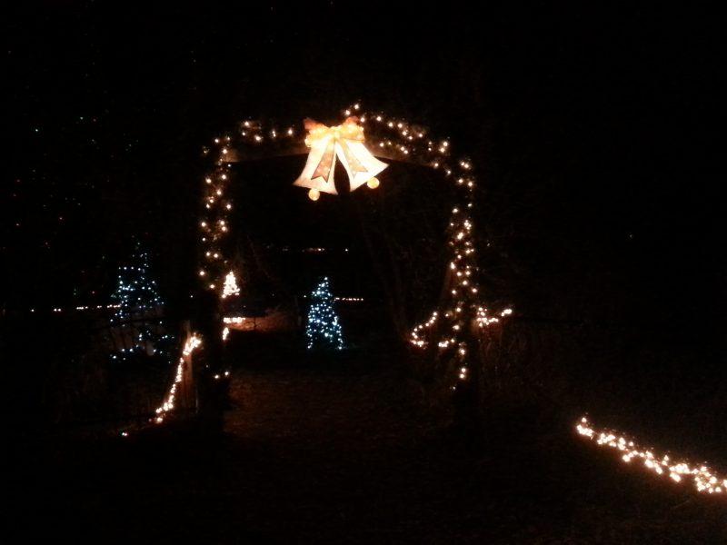christmas-walk-in-woods