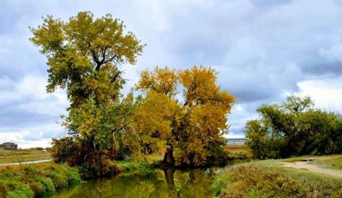 Five Ways to Enjoy Fall in Loveland, Colorado. Loveland in fall, by HeidiTown.com