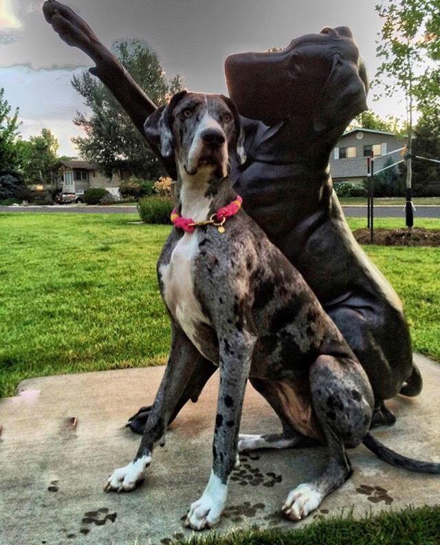 The Most Instagrammable Spots in Loveland, Colorado. Benson Sculpture Garden